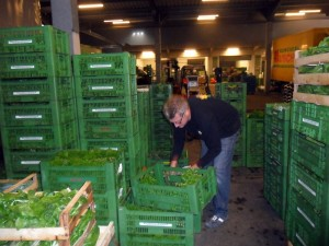 Sorgfältige Auswahl - hier am Großmarkt in Nürnberg: Nur was einer genauen Qualitätsüberprüfung Stand hält, schafft es auch bis in die Obstkistl-Regale .